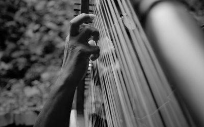 Proefles Harp